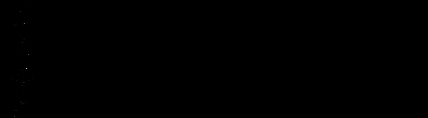 Blockflötenorchester Chorus Flautorum e.V.